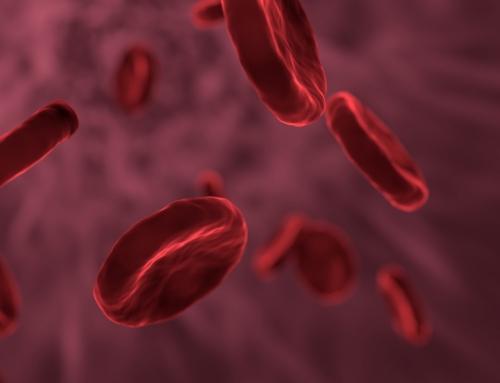Anémie, vide de sang : Le sang en médecine chinoise